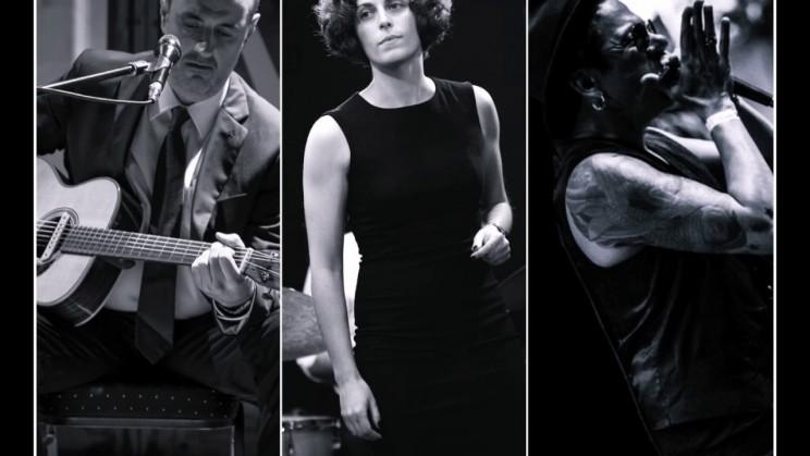 Virginia Rubio Blues Trio (1)